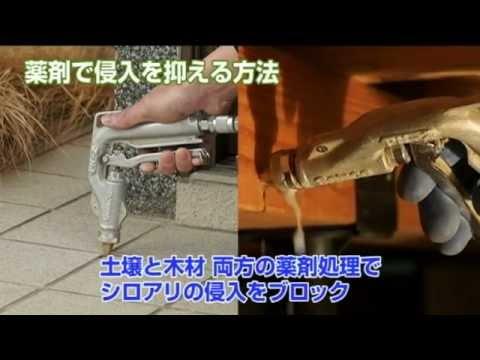 シロアリの防除方法