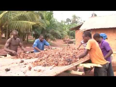 Chocolats Camille Bloch: «Von der Kakaobohne bis zur Schokolade»