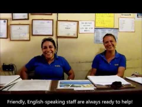 Video of Hostel Oasis Granada