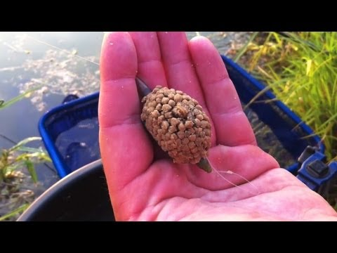 Fishing The Method Feeder For Carp & Tench - Part One