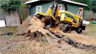 Video Extreme Fast Tree Stump Grinder Modern Technology, Intelligent Forestry Equipment and Mega Machines MP3, 3GP, MP4, WEBM, AVI, FLV April 2019
