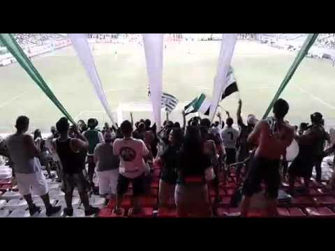 Torcida Barra Una - América 2x0 Cruzeiro - Barra Una - América Mineiro - Brasil - América del Sur
