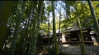 旧村川別荘