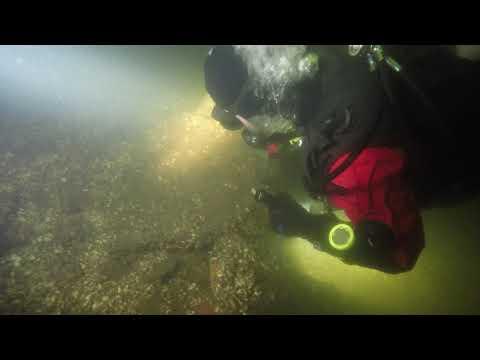 Поиски подводной психбольницы