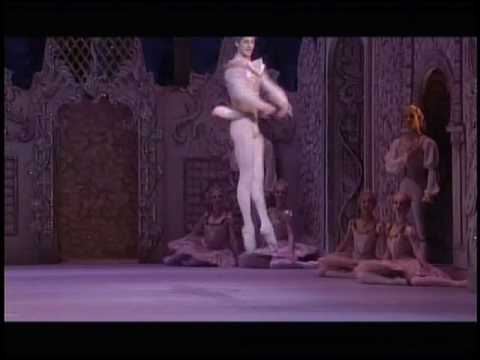 Nutcracker Cojocaru 2 act  part 8 Jonathan Cope Tarantella .avi