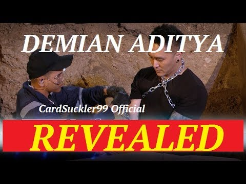 Reveal: Demian Aditya (Grave Trick) in AGT 2017 Judge Cuts (видео)