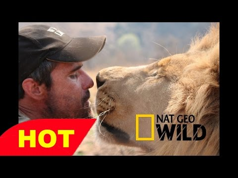 Animals Documentary LIVING WITH LIONS Kevin Richardson National Geographic Animals