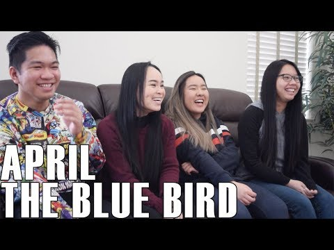 April (에이프릴) - The Blue Bird (Reaction Video) (видео)