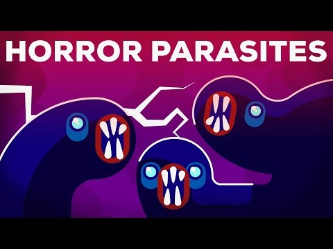 The Most Gruesome Parasites