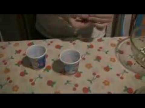 Cómo hacer una maraca - Casa tomada
