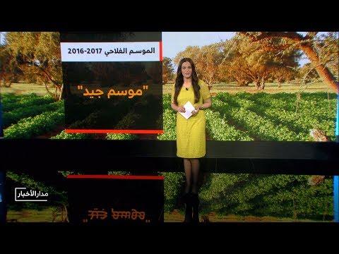 العرب اليوم - شاهد: حصيلة الإنتاج النهائي من الحبوب الرئيسية في المغرب