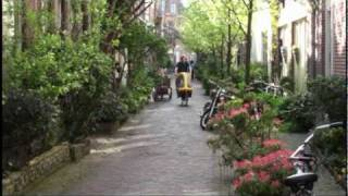 Haarlem Netherlands  City new picture : Haarlem The Netherlands