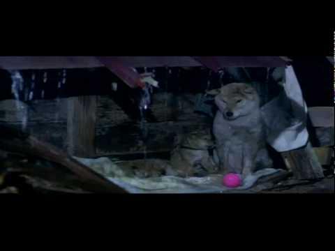 A Tale of Mari and Three Puppies (2007) เพื่อนซื่อ... ชื่อ มาริ [HD]