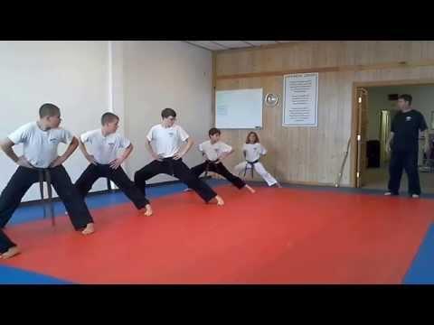 Hampton's Karate Academy - Stances 01