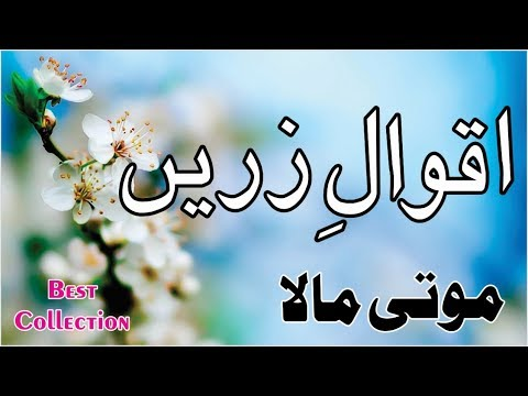 Quotes about happiness - Quotes About Change  Life Quotes  Motivational Quotes  Urdu Hindi Quotes  Quotation  Success