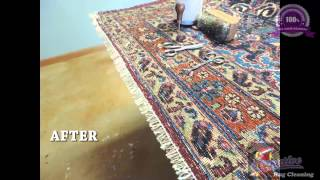 Puppies and Rug Repair