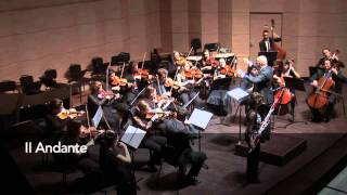 Vivaldi - Concerto for bassoon and strings RV 484