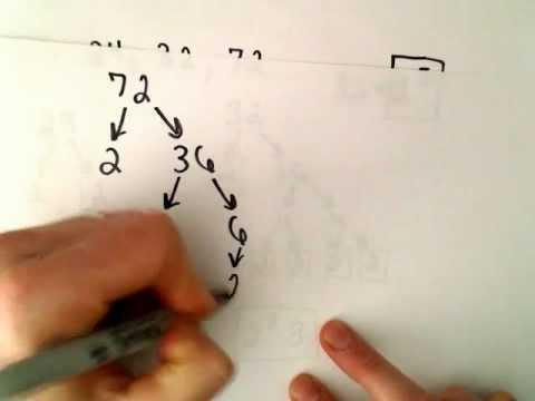 Größten gemeinsamen Teiler von 3 Zahlen mit einem Faktor Baum