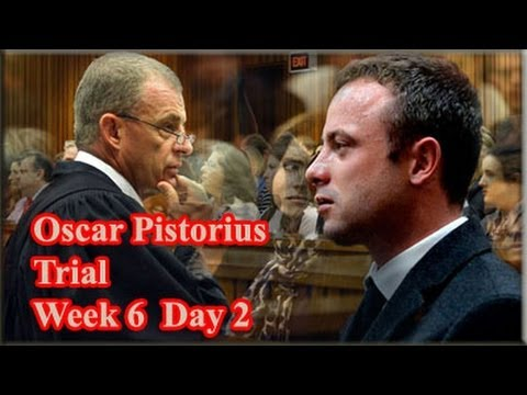 15 - State Prosecutor Gerrie Nel continue with his cross-examination of paralympian Oscar Pistorius for at least another day or two.