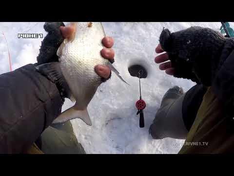 На риболовлю в березні! Поради для вдалого лову! [ВІДЕО]