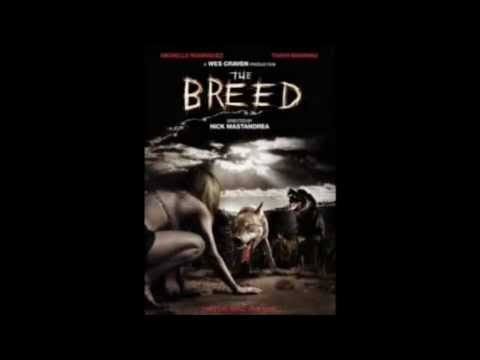 Top 10 Dog Horror Movies