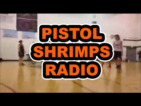 The Pistol Shrimps vs. The Blouses 2-9-16 synced with Pistol Shrimps Radio