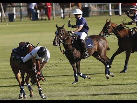 Britain's Prince Harry fell off his horse during a charity polo match in South Africa on November 28.