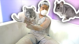 I get to see how Chinchillas take baths using dust!Get your own Guava Juice Box ➽ https://goo.gl/0dTjI7Guava Juice Merchandise ➽ http://www.crowdmade.com/guavajuiceWanna help do my captions?  ➽ http://bit.ly/2pDaiIVSubscribe and become a GUAV! ➽ http://bit.ly/GUAVAJUICESend me some FAN ART! ➽  http://bit.ly/GuavaFBGuava Juice Merchandise ➽ http://www.crowdmade.com/guavajuiceFollow me on the Social Media!----------------------------------------------------------------Twitter ➽ http://www.twitter.com/GuavaRoiInstagram ➽  http://www.instagram.com/GuavaRoiFacebook ➽ http://www.facebook.com/GuavaRoiSnapchat ➽  WhereIsRoiWatch some of these AWESOME playlists!----------------------------------------------------------------Randomness! ➽ - http://bit.ly/GuavaRandomChallenges! ➽ - http://bit.ly/GuavaCHALLENGESRoblox! ➽  - http://bit.ly/GuavaROBLOXTutorials!! ➽ http://bit.ly/GuavaTUTORIALS╘[◉﹃◉]╕ ╘[◉﹃◉]╕╘[◉﹃◉]╕What's up YouTube! Welcome to Guava Juice, You may know me from Wassabi Productions. This is my new gaming channel where I will be putting out all my content going forward. I post two videos a day at 12PM and 3PM PST!On here you'll find lots of ridiculous fun games from Happy Wheels, Roblox and Yandere Simulator to random games you've never heard of! You'll also find INSANE challenges, sketch comedy, and random shenanigans that you'll love! Subscribe and become a GUAV! Be yourself, be humble, and inspire!Thanks for watching doodes! ( ́ ◕◞ε◟◕`)Thanks for reading the end of this description!#stayjuicy #guavajuice