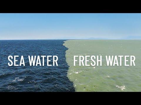 Miejsce w którym spotykają się dwa oceany, ale nie mieszają się ze sobą. Widok zapiera dech w piersiach!