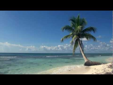 Tropical beach video - think warm thoughts!
