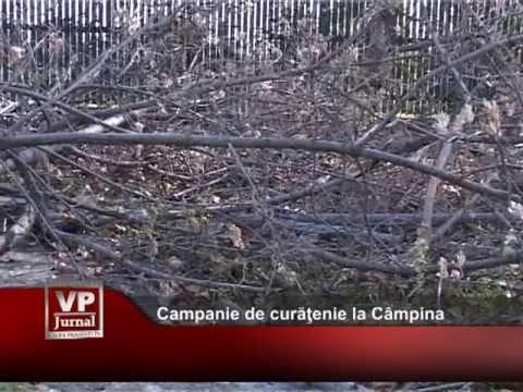 Campanie de curăţenie la Câmpina