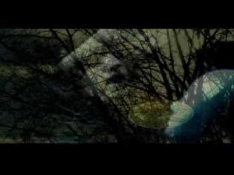 Youtube Video qRtmET8dTic