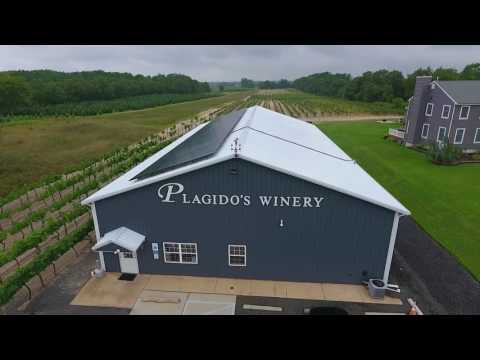 At The Vineyard Show Plagido's Winery - Episode 4 #Plagidos
