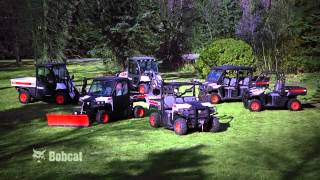 2. Bobcat 3600/3650 Utility Vehicles: Our Most Versatile UTVs