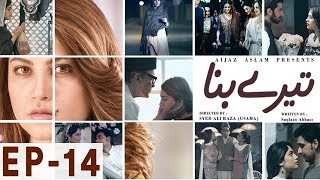 Tere Bina - Episode 14 | Har Pal Geo Video