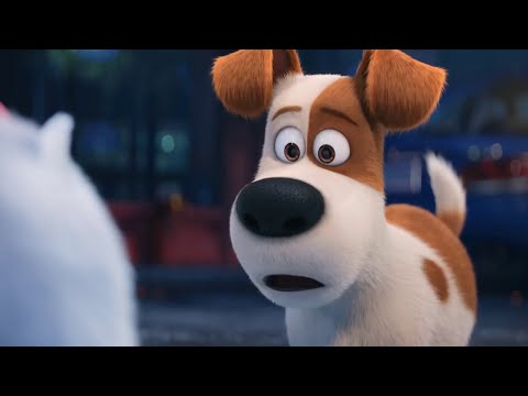The Secret Life of Pets - Gidget | Best Memorable Funny Moments| Cartoons for kids