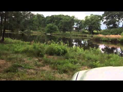 Pond Fishing Bass Plastic Worm
