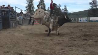 BC Bull Riders Do Some Winning in Their Home Province