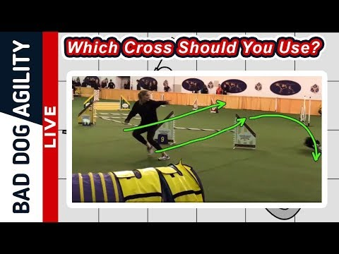 How To Decide Which Cross To Use In Agility