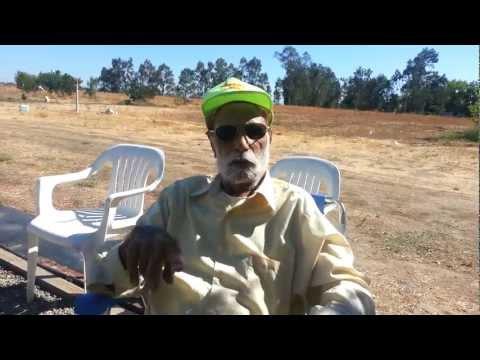 GrandParents in world war 1 (видео)