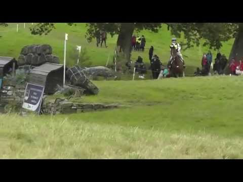Dassett Jack double clear Blair CIC*** August 2014