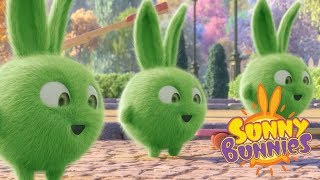 Videos For Kids | TRIPLE TROUBLE - SUNNY BUNNIES | Cute Cartoons | Funny Videos For Kids