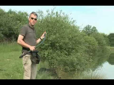 Baston nadire Fox (Throwing Sticks)