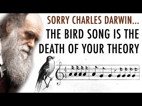 Discovery of Bird Songs Defy Royal Society Open Science and Charles Darwin Evolution Theory (видео)