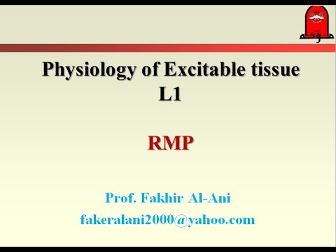 Physiology - excitable tissue and RMP