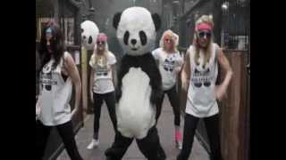 Video PANDA STYLE (gangnam style mashup - Vodka King, Elephant Man, Fr