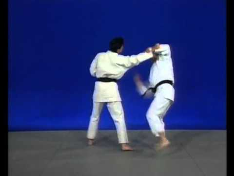 Maitriser jujitsu – Techniques basique
