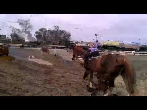 Horseback Riding at Central Park Equestrian Center in Huntington Beach, CA