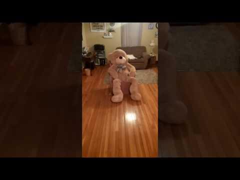 Valentine's day... Giant Teddy Bear Fail?
