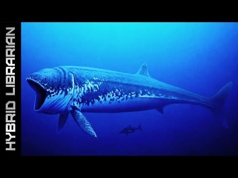 World s 10 Biggest Animals of All Time